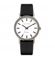 Danish Design Herrenuhr Titan 3316028 (IQ14Q199)